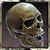 AchievementThe Ebon Crypt Explorer