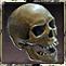 AchievementThe Ebon Crypt Explorer.png