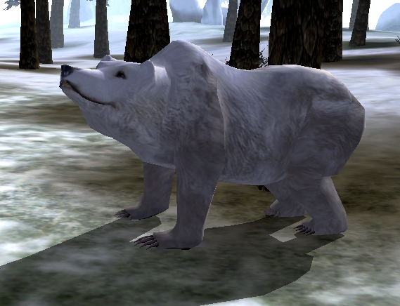 File:Snow Bear.jpg