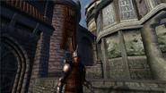 TESIV Guard Anvil 3