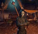 The Sorcerer Division