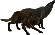 TESV Wolves