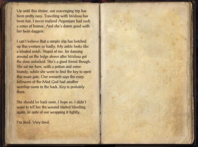 File:Shrine Scavenging Journal.png
