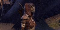 Uxith Warrior