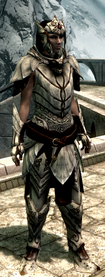Ancient falmer armor complete front