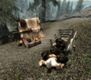 The Unfortunate Miner