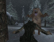 Werewolf Player Fighting Bear
