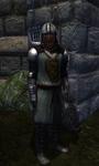 TESIV Guard Bravil 1