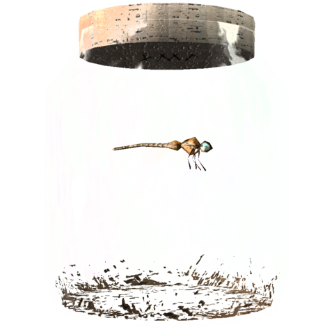 File:TESV Dragonfly In A Jar Crop.png