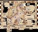 Birthsign steed