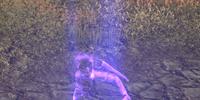 Selfora Priest