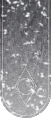 File:TESV Banner ThievesGuild.png