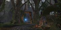 Elden Root Temple Wayshrine