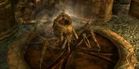 Steadfast Dwarven Spider