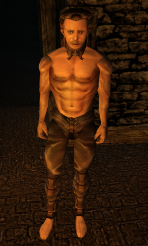 File:Arnskar Morrowind.png