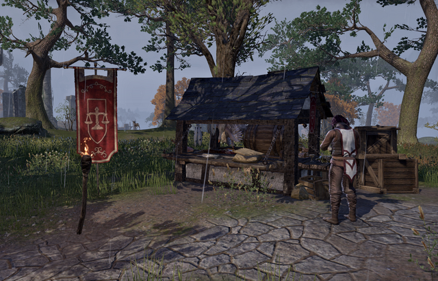 File:Guild Store (The Storm Route Stall).png