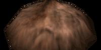 Bonemeal (Morrowind)