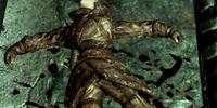 Eydis (Dragonborn)