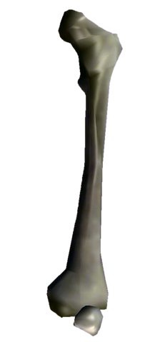 File:Bones Big Bone.png