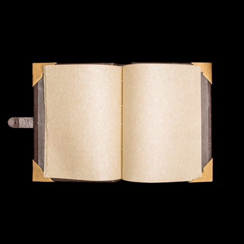 File:Black Sacrament Ledger Open (2).png