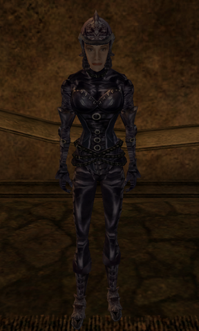 File:Domina armor.png