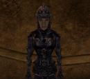 Domina Armor