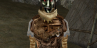 Tibdan Shalarnetus