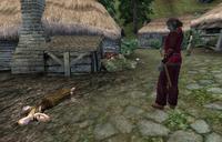 Mephala Quest Aftermath
