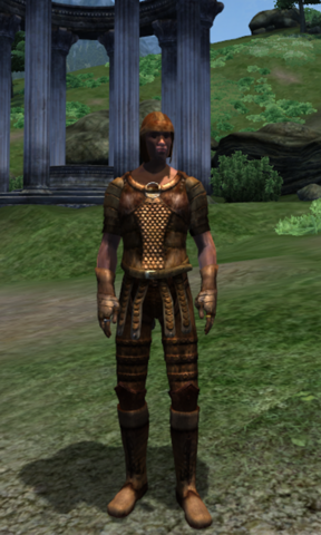 File:Pit Armor.png