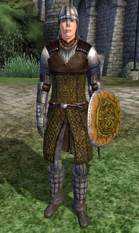 File:Cheydinhal Soldier.png