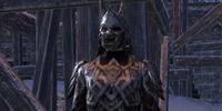 Orsinium Guard