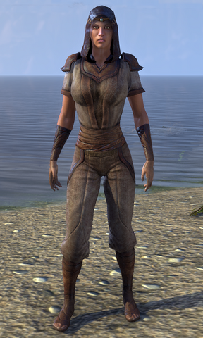 File:Midnight Union Disguise Female.png