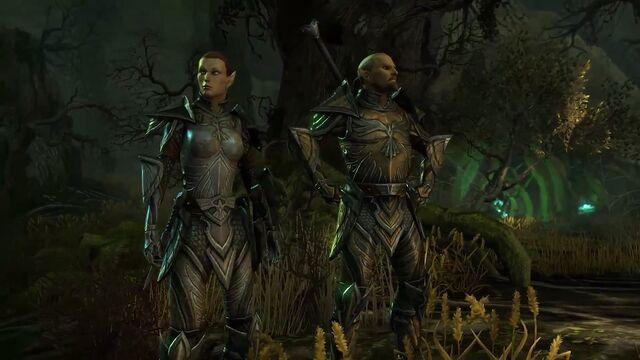 File:High Elves (Online).jpg