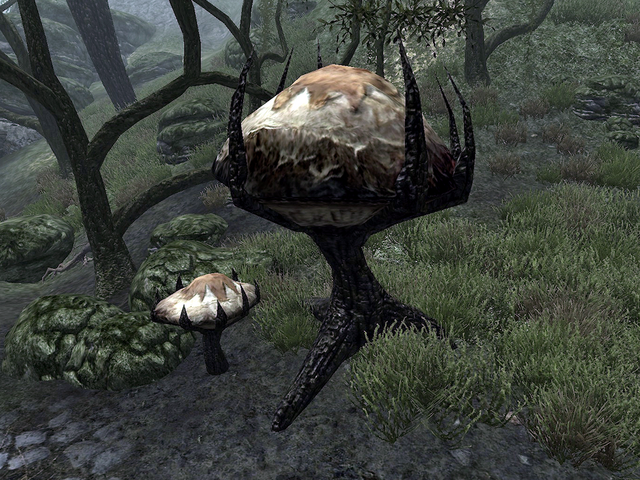 File:Mushroom Tree (Dementia).png