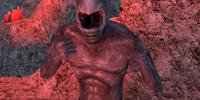 Ash Creatures