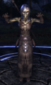 ESO Draugr Wight.png
