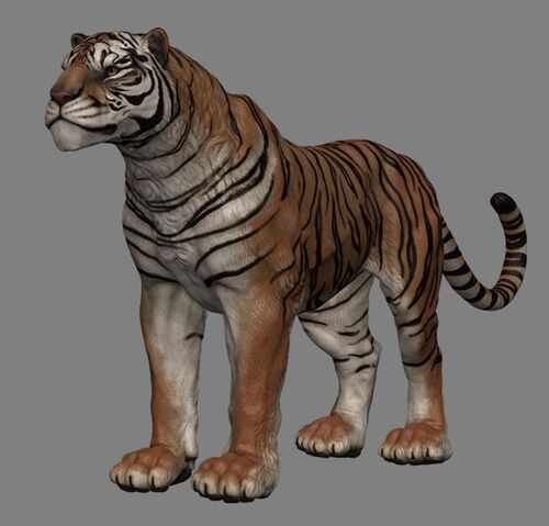 File:Senche-tiger (Online).jpg