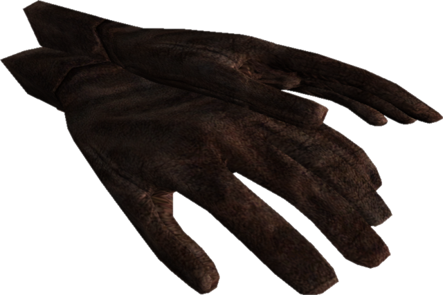 File:TESV Gloves.png
