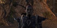 Chief Ruzgrol