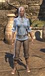 Servant's Robes Female