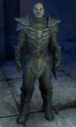 Warcaller Targoth Past - Helmet Off