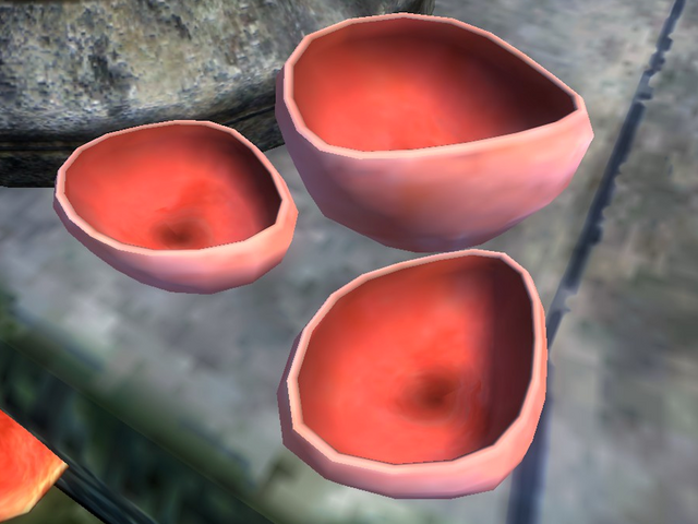 File:Elf Cup.png
