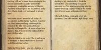 Henri's Journal