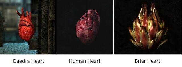 File:Hearts Skyrim.jpg