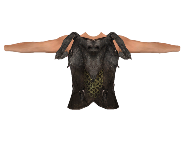 File:Savior's Hide (Oblivion).png