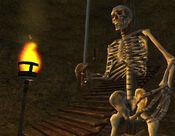 Skeleton Screenshot