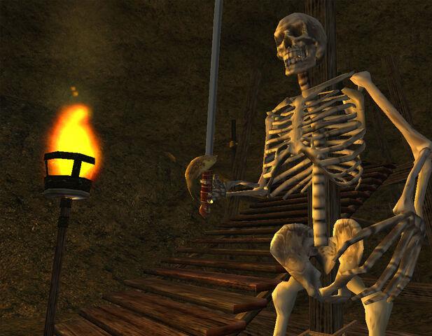 File:Skeleton Screenshot.jpg