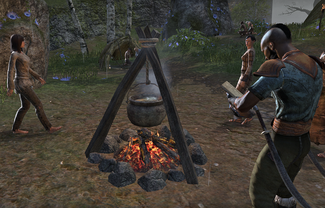 File:Cooking Fire.png