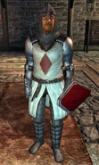 Sir Thedret Knight