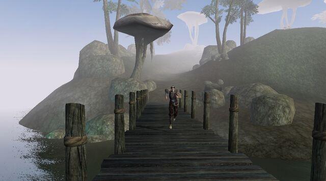File:TES3 Morrowind - quest - An Escort to Molag Mar - Paur Maston running on bridge.jpg
